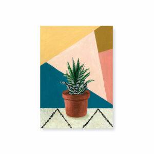 carte-postale-haworthia-melanie-voituriez