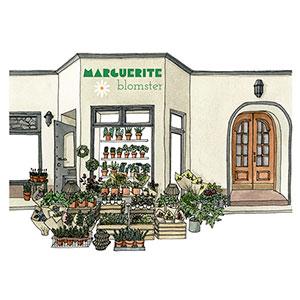 Marguerite Blomster